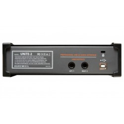 Kurzweil KS-50a Monitores Autoamplificados