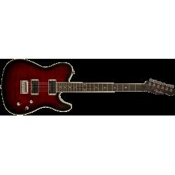 Fender Special Edition...