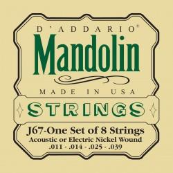 DADDARIO J67 MEDIUM, [11-39] JUEGO MANDOLINA