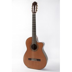 Guitarra Raimundo 660 Cutway Electrificada