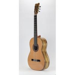 Guitarra Signature Tatyana Ryzhkova Black Limba
