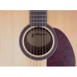 Acústica Raimundo DS9700E Dreadnouhgt Palosanto