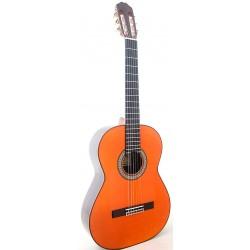 Raimundo 145 Flamenca Palosanto
