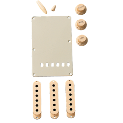 Fender Accessory Kit, Stratocaster®, Aged White