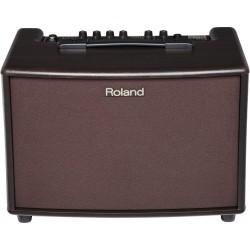 Roland AC-60-RW (Palisandro)