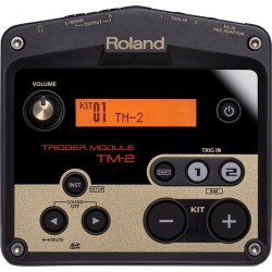 Roland módulo TM-2