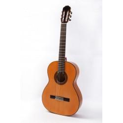 Raimundo 126 Flamenca