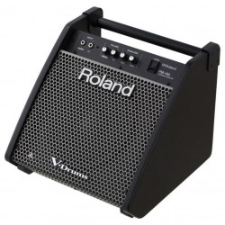 ROLAND PM-100 Monitor Bateria